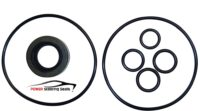 Eagle Premier Power Steering Pump Seal Kit